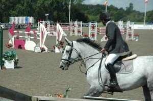 Wembley- 2nd in the 7/8 year old HOYS qualifier